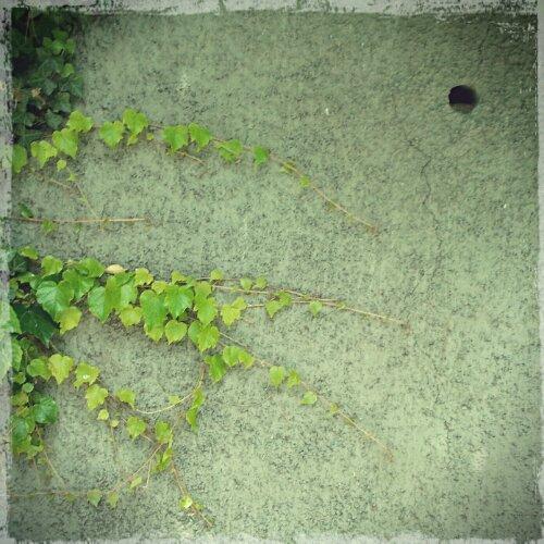 wpid-2013-05-30-14.28.20_20130530182328404.jpg
