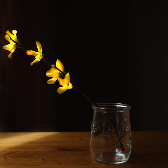 flores amarillas 1 para blog