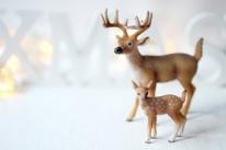 Ciervos, luces y Navidad