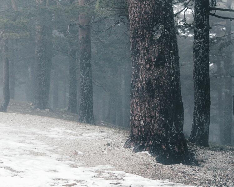 Un poco más de invierno