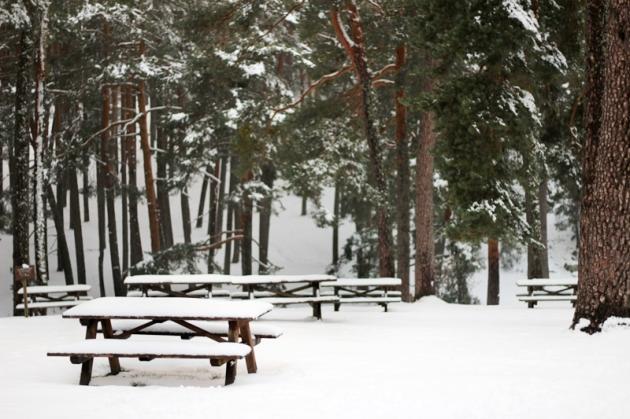 Fotografiar el invierno - La Boca del Asno - Segovia