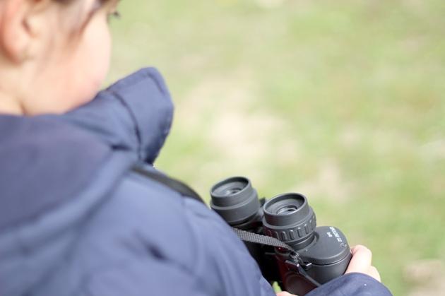 Las Tablas de Daimiel - avistamiento de aves